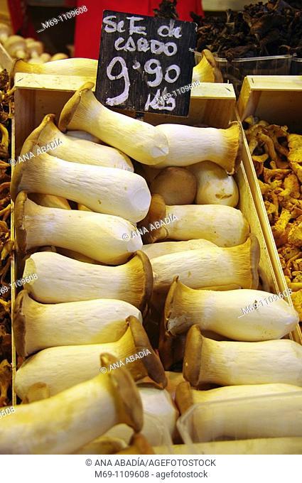 Selling mushrooms in Sant Josep Market, La Boqueria, Barcelona