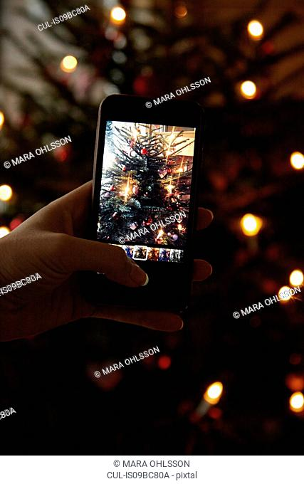 Hand holding mobile phone, taking photograph of Christmas tree