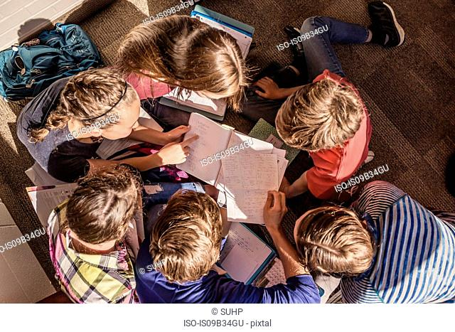 Overhead view of teenagers reading notes in high school study group