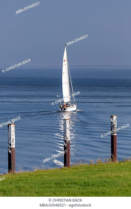 Sailboats on the North Sea in front of Büsum, Ditmarsh, Schleswig - Holstein, North Germany, Germany
