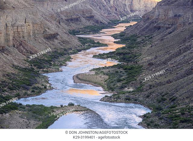 The Colorado River at Nankoweep near sunset, Grand Canyon National Park, Arizona, USA