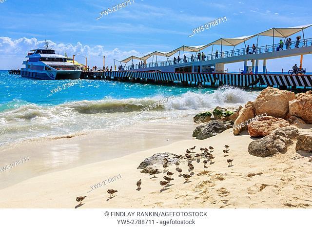 Beach and pier at Playa Del Carmen, Riviera Maya, near Cancun, Mexico