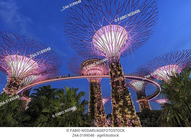 Singapore, Singapore - October 16, 2018: Supetree Grove during the blue hour at the Gardens by the Bay in Singapore