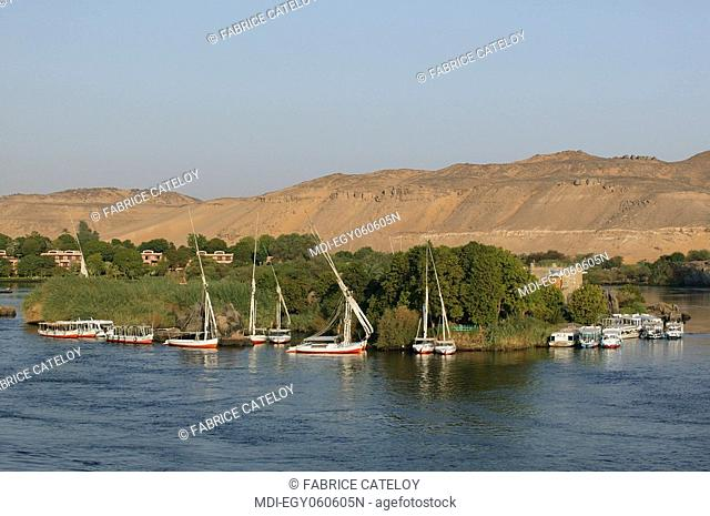 Felouques along the Elephantine island on the Nile