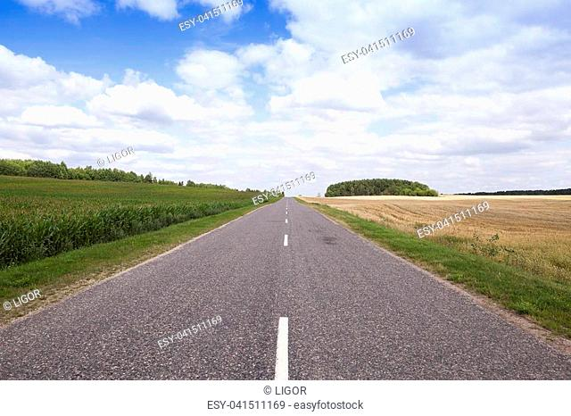photographed asphalt summer road in the countryside