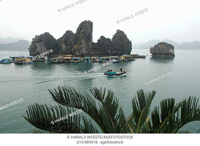 Asia, Vietnam, Halong Bay  Floating village on the Halong Bay  Designated a UNESCO World Heritage Site in 1994, the sensational Halong Bay is spread across 1...