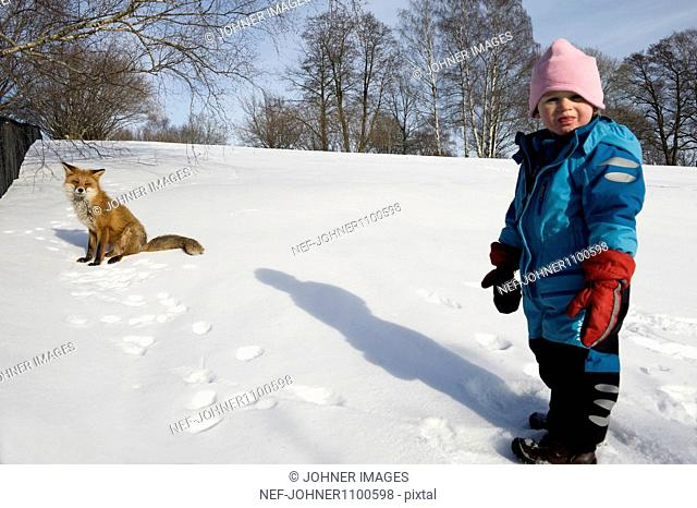 Girl standing on snow in front of red fox