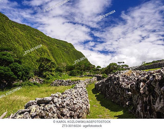 Landscape of Faja Grande, Flores Island, Azores, Portugal