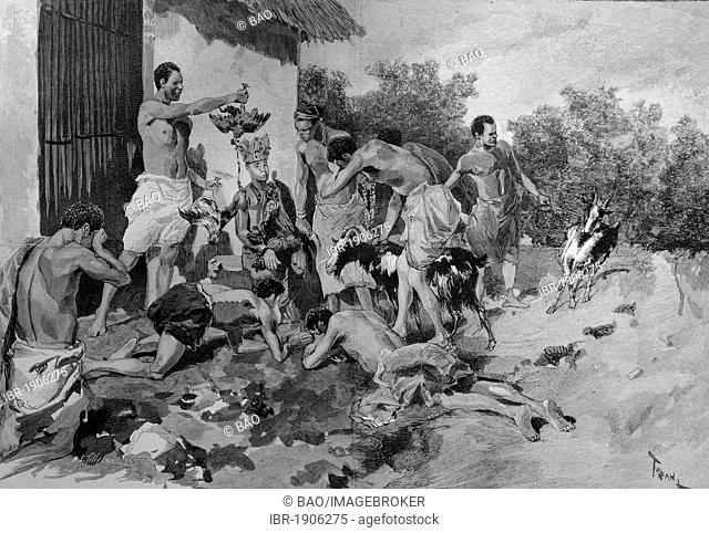 Sacrifice of animals in front of a war fetish in Dahomey, now Benin, Africa, woodcut circa 1871