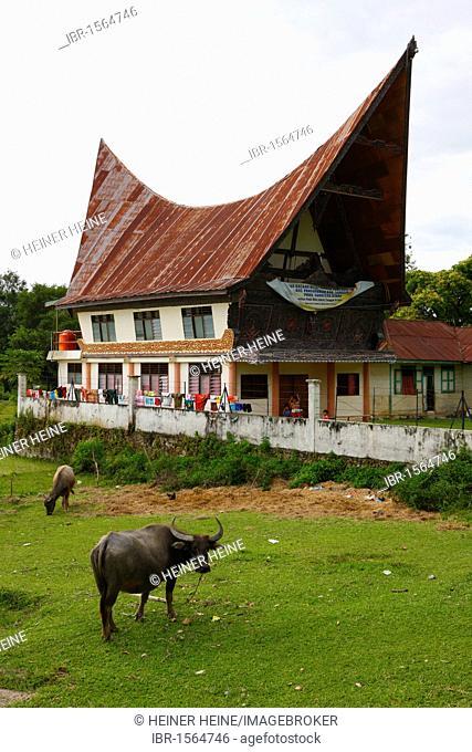 Batak building, Batak culture, Samosir Island, Lake Toba, Batak region, Sumatra, Indonesia, Southeast Asia, Asia