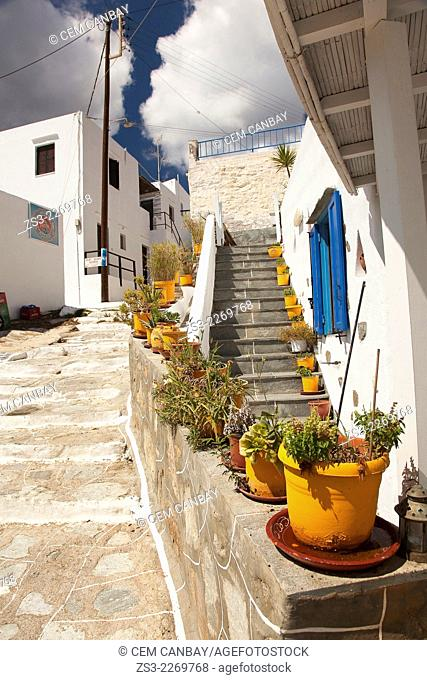 Yellow flower pots in front of a house near the sea in Faros village, Sifnos, Cyclades Islands, Greek Islands, Greece, Europe