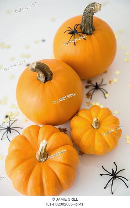 Studio Shot of pumpkins with halloween decoration