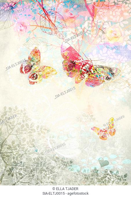 Multicolored butterflies and plants