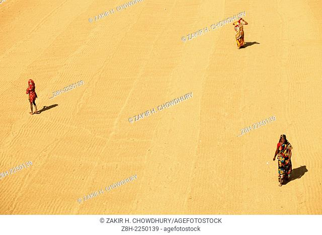 worker drying paddy at rice processing field using sun light