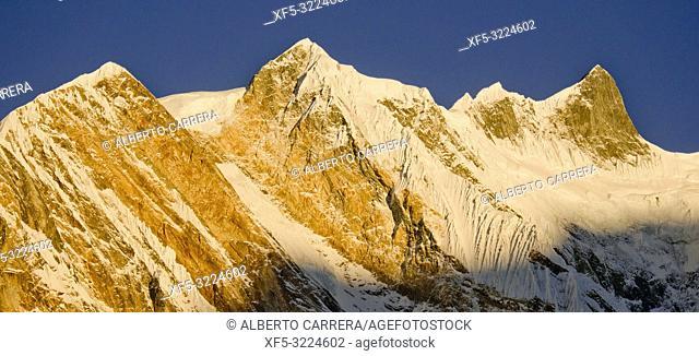 Baraha Shikhar, Annapurna Range Sunrise, Trek to Annapurna Base Camp, Annapurna Conservation Area, Himalaya, Nepal, Asia