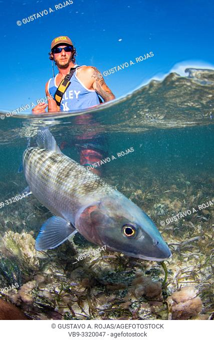 Over/under type shot SPLIT off man hold a BIG BONEFISH underwater saltwater fly fishing los roques venezuela