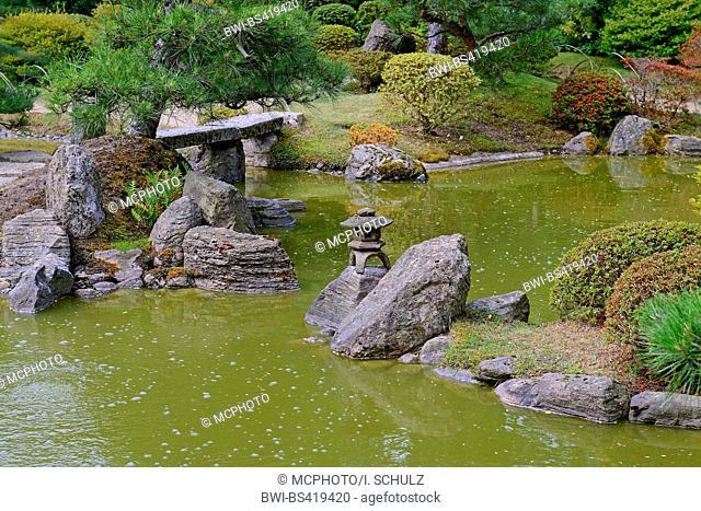 typical Japanese garden with stone decoration, stone lantern and koi pond