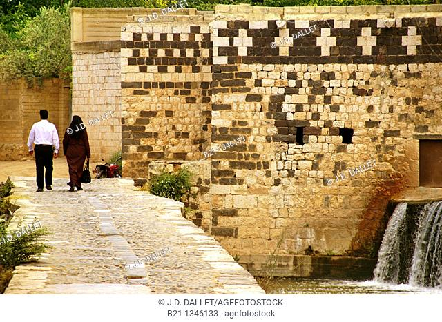On the side of the Orontes river, Hama, Syria