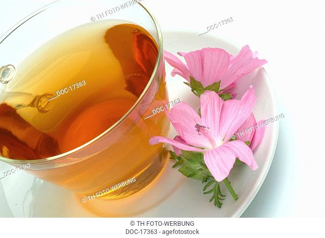 tea made of Musk mallow - medicinal tea - herbtea - Malva moschate - Malva moscata