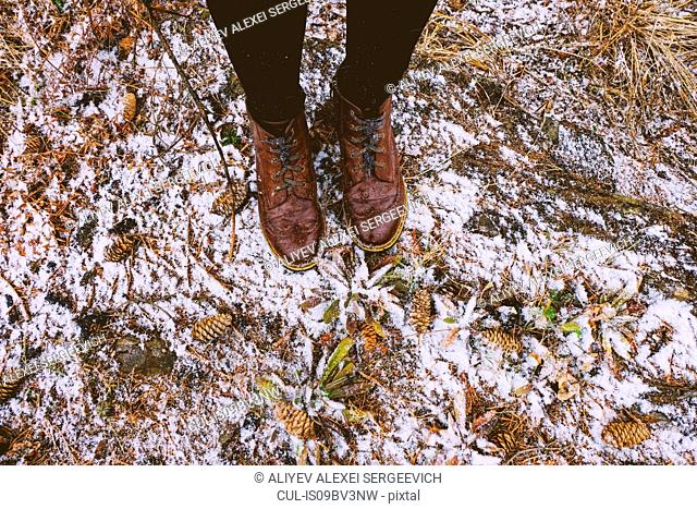 Feet of woman standing in forest in winter, Ural, Sverdlovsk, Russia