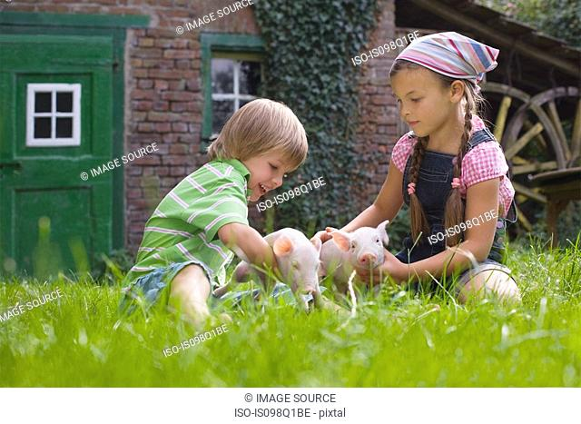 Brother and sister playing with piglets