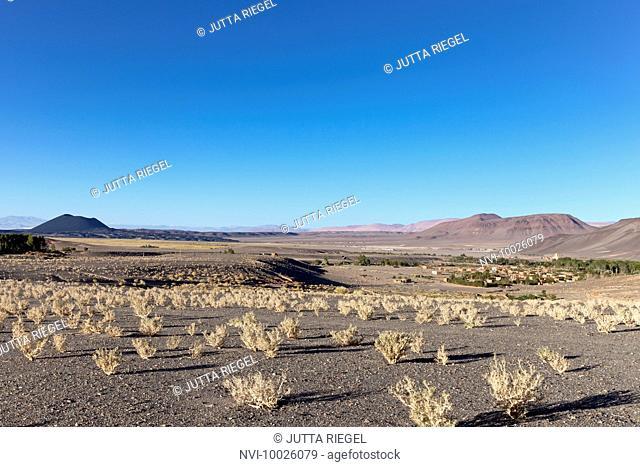 Antofagasta de la Sierra, Catamarca Province, Argentina, South America