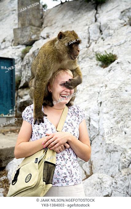 Monkey Sitting on Woman`s Head, Gibraltar