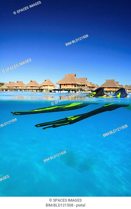 Snorkeler's flippers in tropical water, Bora Bora, French Polynesia