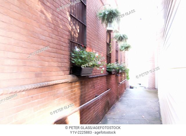 Alleyway between two city stores