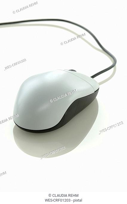 Computer mouse, close-up
