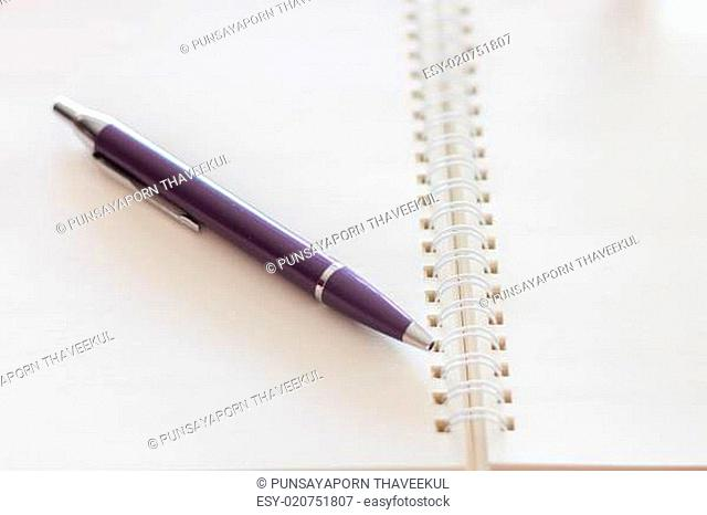 Pen and blank spiral notebook
