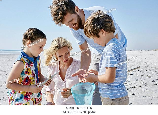 Happy family with dip net on the beach