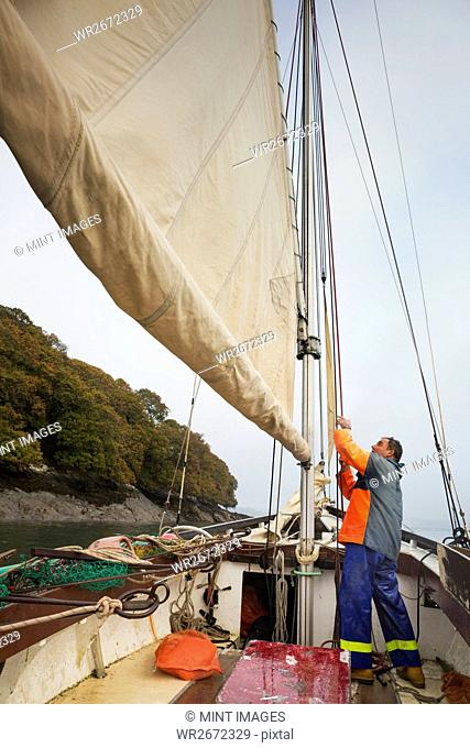 Traditional sustainable oyster fishing. A fisherman on his sailing boat by the mast