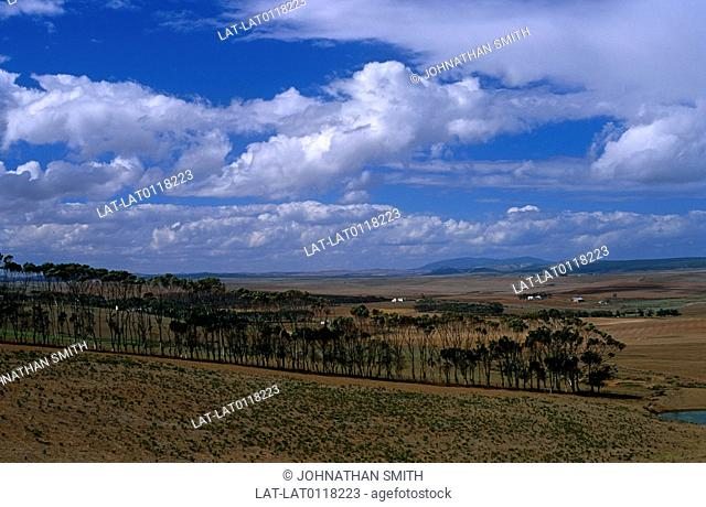 South Africa has a large agricultural sector and is a net exporter of farming products. There are almost a thousand agricultural cooperatives and agribusinesses...