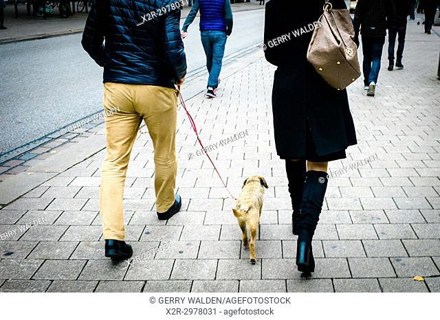 Walking the family dog through the streets of Hamburg