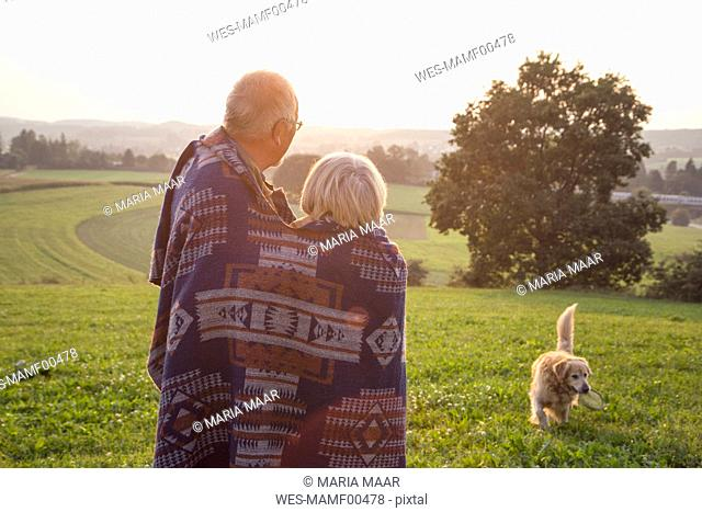Back view of senior couple standing on a meadow at sunset watching their dog