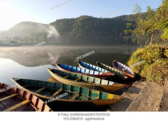 Painted boats on Phewa Lake, early morning - Pokhara, Pokhara Valley, Gandaki Zone, Nepal