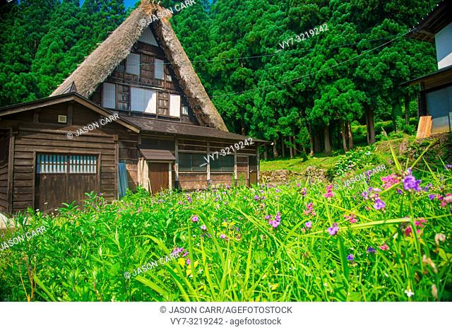 Ainokura Gassho Zukuri farmhouses in Toyama, Japan. Japan is a country located in the East Asia