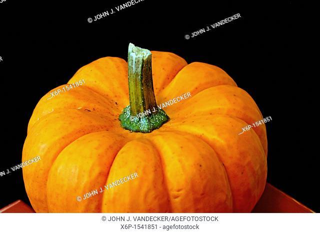 A closeup of a orange pumpkin gourd