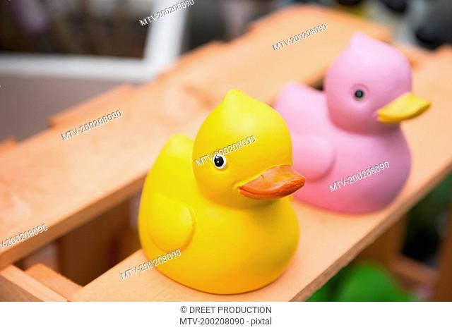 Close-up of rubber ducks in garden centre, Augsburg, Bavaria, Germany