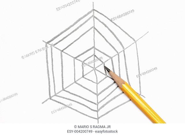 Sketch of spider web