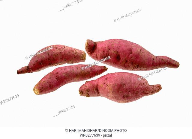 Vegetable , Five Sweet Potato on white background