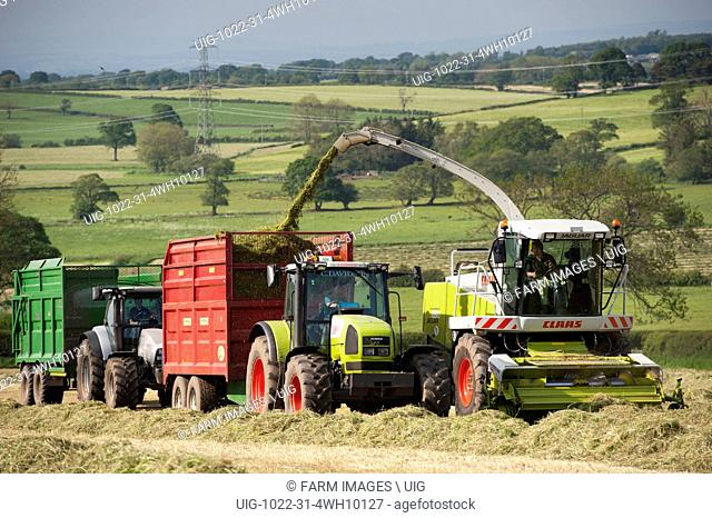 Claas Jaguar 850 self propelled forager chopping grass and loading trailers for silage to be used as winter livestock feed, Cumbria, UK