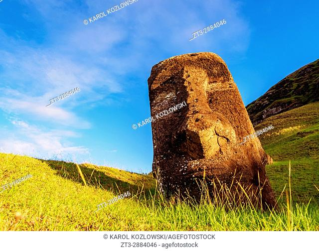 Moai at the quarry on the slope of the Rano Raraku Volcano at sunrise, Rapa Nui National Park, Easter Island, Chile