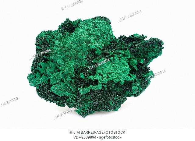 Malachite is a copper carbonate hydroxide mineral. This sample comes from Katanga, Democratic Republic of the Congo (Zaire)