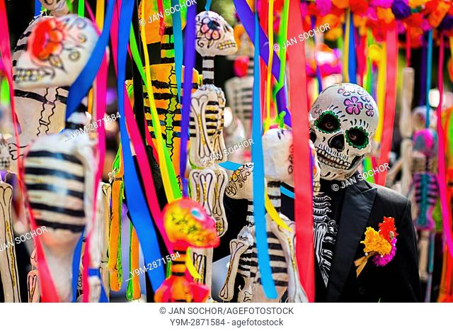 A Mexican man, dressed as skeleton (Calaca), walks through the town during the Day of the Dead parade in Mexico City, Mexico, 29 November 2016