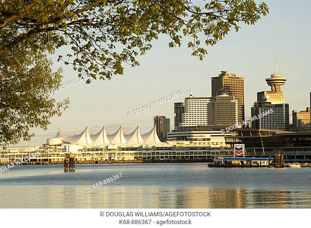 downtown Vancouver, BC, Canada, from Stanley Park, Canada Place, Waterfront Hotel and Vancouver Convention Centre