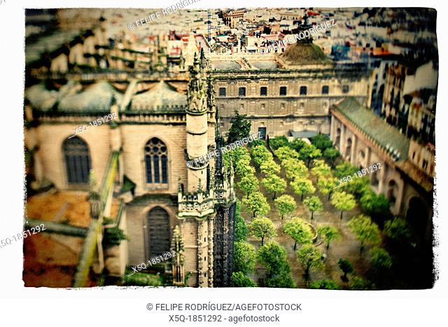 View of the Cathedral and Orange Tree Yard from the top of the Giralda tower, Seville, Spain  Tilted lens used for a shallower depth of field