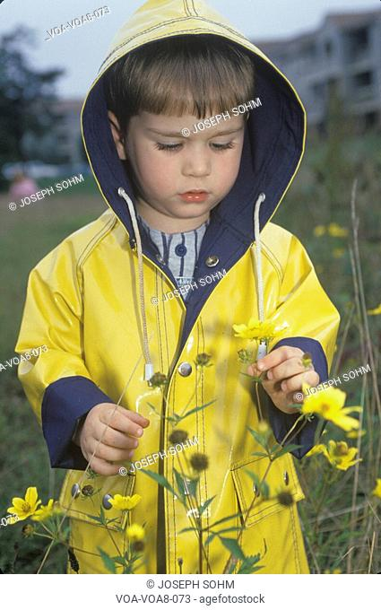 A boy exploring the wildflowers on a rainy day, Washington, D.C
