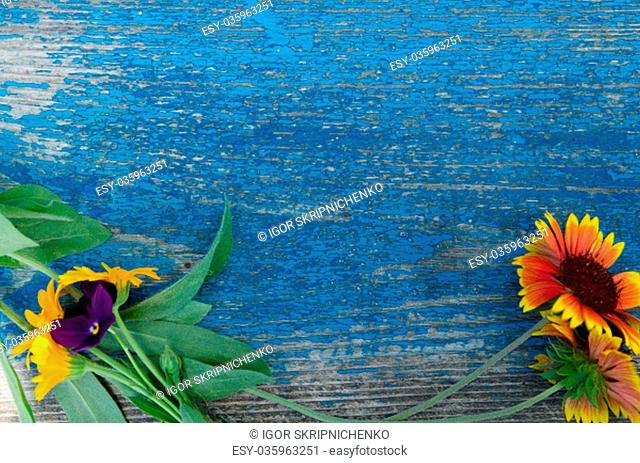Flowers along the perimeter of a wooden, painted blue board with cracks, texture, background, wallpaper